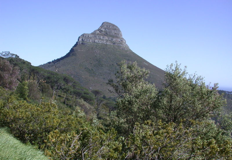 Tabe-Mountain / Lions head